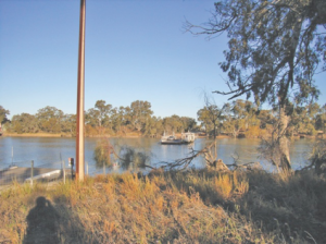 Ferry crossing the Murray to Lyrup